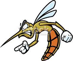 mosquito4.jpg