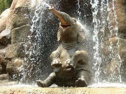 happy_elephant.jpg
