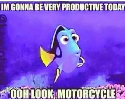 Dori-motorcycle-meme-2.jpg