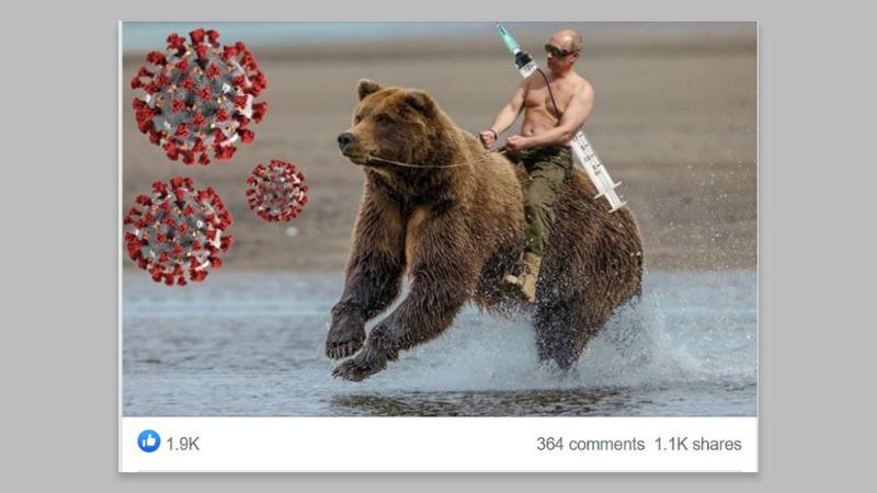 _113939902_bear_grey.jpg